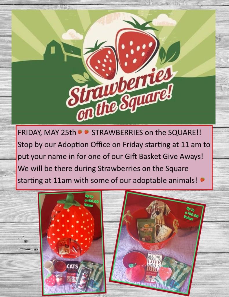 StrawberriesontheSquare